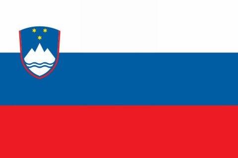 Slovenia bandiera