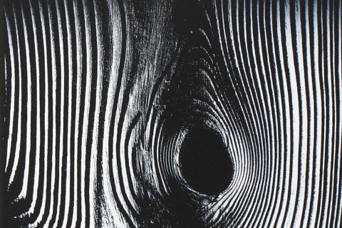 il popolo di legno emanuele trevi