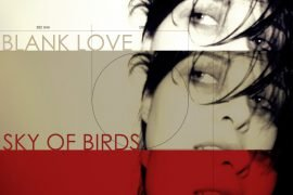 Blank Love Sky of Birds