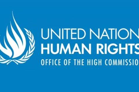 ONU diritti umani