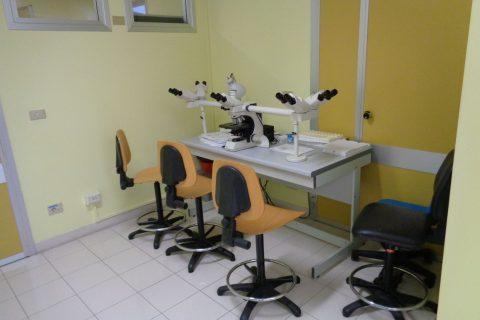 giovani ricerca scienze microsopio fisica