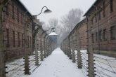 campo di sterminio olocausto