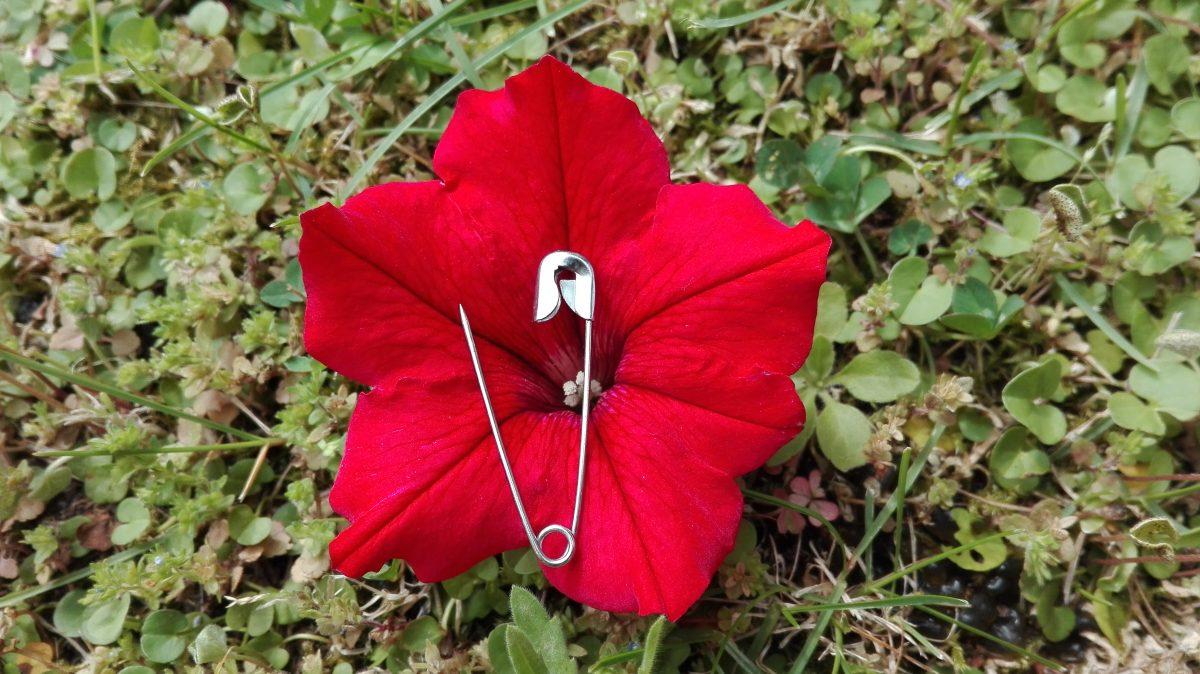 donne mutilazione spilla fibula