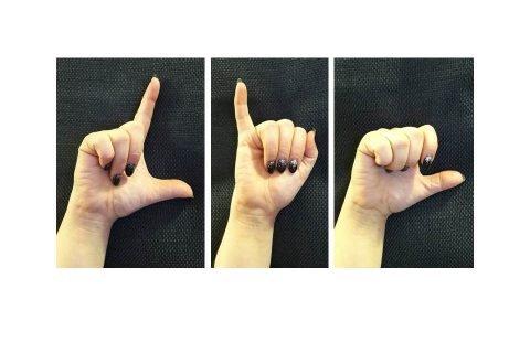 Lis lingua dei segni