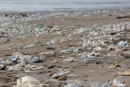 plastica spiaggia