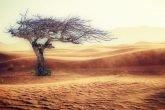 desertificazione riscaldamento globale