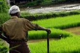 India agricoltori
