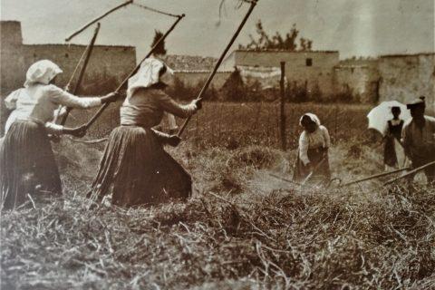 storia abruzzo contadini