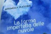 Antonella Zucchini la forma imperfetta delle nuvole