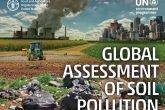 rapporto inquinamento suolo
