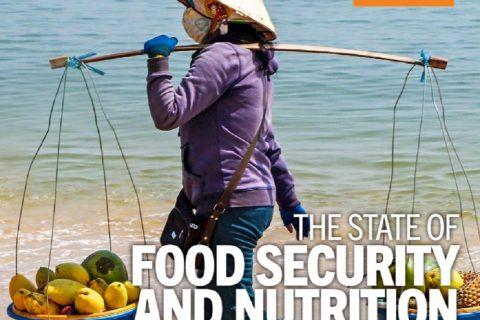 FAO stato sicurezza alimentare alimentazione nel mondo 2021
